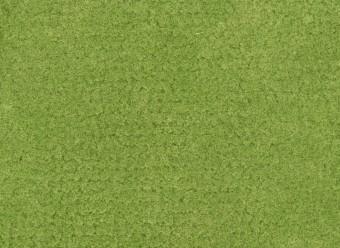 Christian-Fischbacher-Teppich-En-Vogue-Premium-Merinowolle-lindgrün
