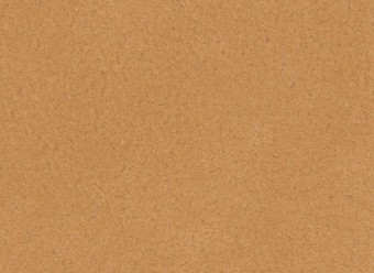 Christian-Fischbacher-Teppich-En-Vogue-Premium-Merinowolle-nude