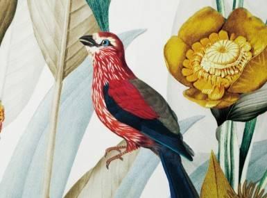 Vorschaubild christian fischbacher kotori gardinen