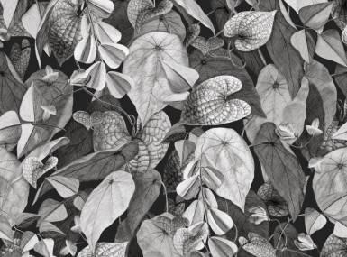 Vorschaubild christian fischbacher tapete botanica 200339 detail1