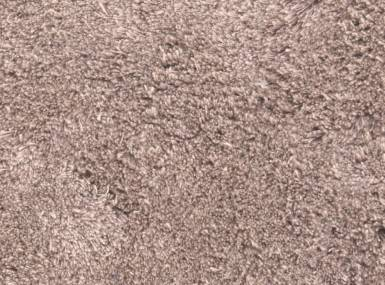 Vorschaubild christian fischbacher teppich fenn linen dreams 008