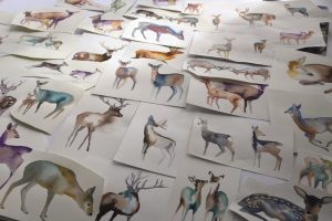 Christian Fischbacher Bettwäsche Its Snowing My Deer Skizze Behind the Design